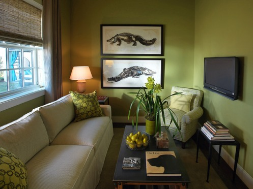 olive green living room crocodile aligator pictures paintings
