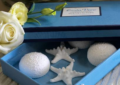 blue box with white sea shells