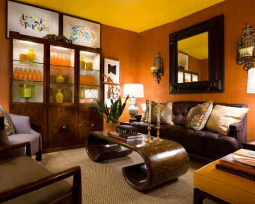 terracotta and dark brown modern living room