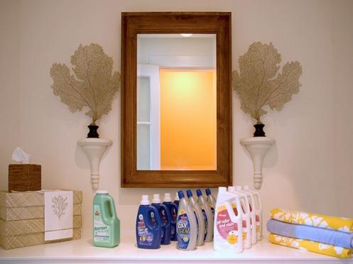 loundry nook mirror sea fans