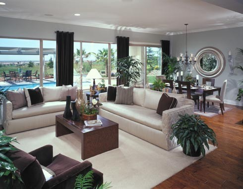 baby blue and brown living room